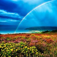 1308-robert-hatton-rainbow-over-porlock