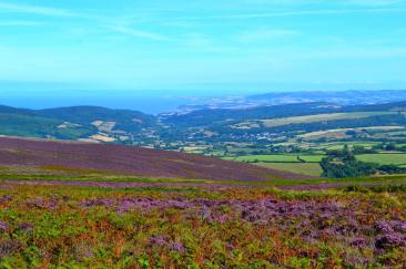 1408-micheal-edwards-view-from-dunkery