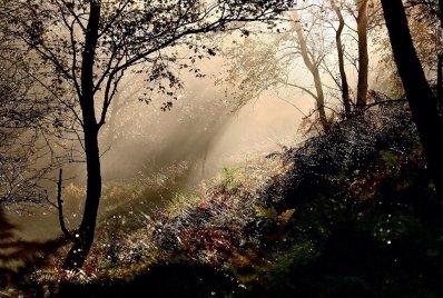 1508-exmoor-life-2
