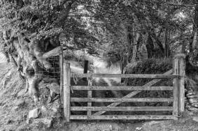 1708-richard-havers-just-below-brendon-common