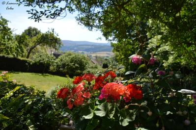 1808-leanna-coles-looking-down-to-selworthy-green-with-dunkery-beacon-in-the-distance