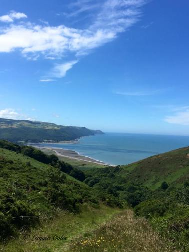 2108-leanna-coles-looking-down-the-coastline-from-north-hill