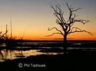2108-phil-taphouse-sunset-at-porlock-marsh