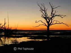 2108-phil-taphouse-sunset-at-porlock-marsh