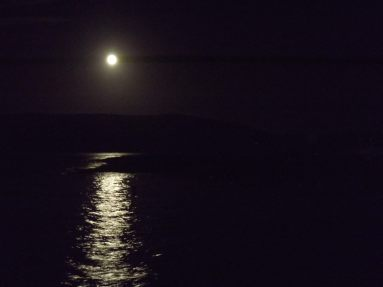 306-jim-winzer-moon-reflected-in-the-high-tide-at-pw