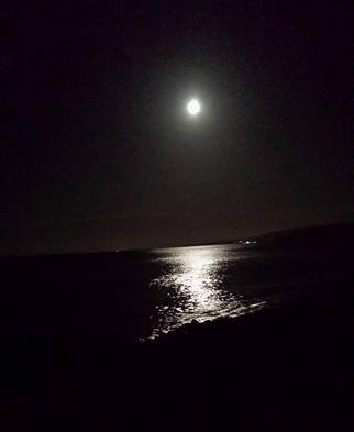 307-salad-days-beach-hut-full-moon-and-high-tide-at-dunster-beach
