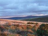 102-nigel-hester-exmoor-in-october