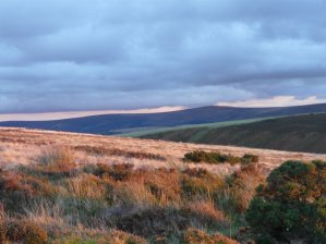 102-nigel-hester-exmoor-in-october