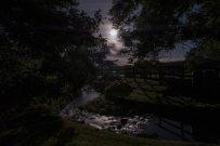 115-louisa-may-moonlight-river