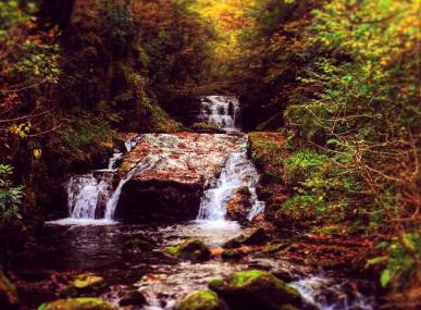 202-charlotte-rolfe-watersmeet-lynmouth