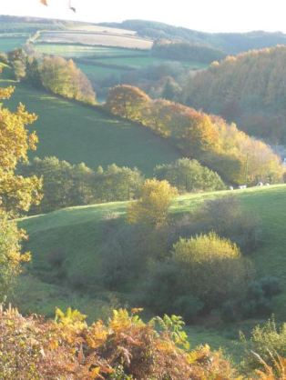 218-hazel-prior-an-evening-walk-down-an-exmoor-valley-in-autumn