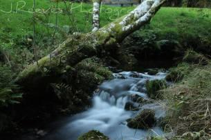 232-martine-reeves-exmoor-stream