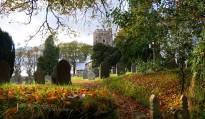 235-julia-amies-green-exford-church-in-the-last-of-the-autumnal-colours