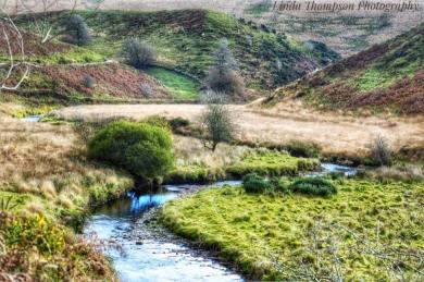 238-linda-thompson-by-the-river-simonsbath
