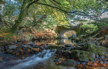 310-julie-thomas-robbers-bridge-what-a-beautiful-place-for-our-walk-and-picnic-today