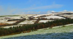 310-richard-williams-exmoor-snow-with-a-little-sun-thrown-in