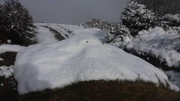 312-enp-snow