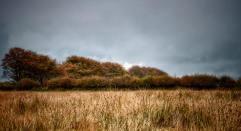 816-linda-thompson-autumn-with-rain-clouds-on-exmoor