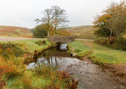 825-simon-dibble-a-very-grey-autumn-day-at-lower-willingford-bridge-the-north-devon-side-of-the-danes-brook-exmoor