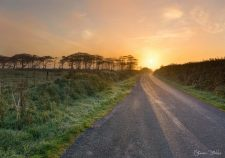 834-simon-dibble-an-early-start-this-morning-on-exmoor-driving-on-the-road-from-sandyway-to-white-post-the-sunrise-was-absolutely-stunning