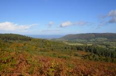 836-leanna-coles-enjoying-the-first-of-the-autumn-colours-near-webbers-post