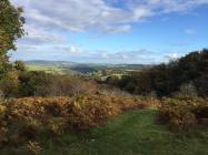 846-caroline-cook-october-on-exmoor