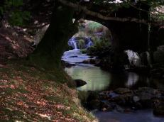 847-alan-williams-robbers-bridge