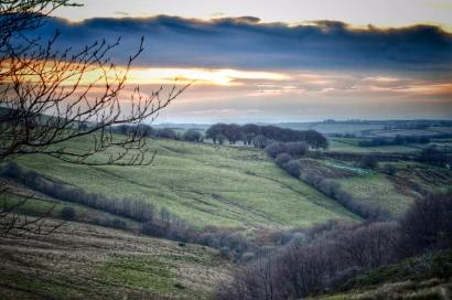 103-linda-thompson-up-on-exmoor-yesterday-very-chilly-but-a-beautiful-afternoon