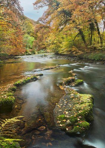 204-richard-kift-autumn-on-the-river-barle
