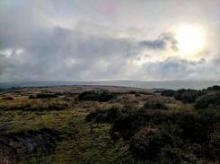 417-beckie-wilde-even-on-a-horrible-day-the-moor-still-looking-stunning-21-dec