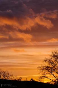 507-an-intense-sky-at-sunrise-on-boxing-day-over-the-exe-valley-near-winsford-by-julia-amies-green-photography