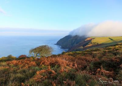 701-simon-dibble-incredible-scenery-lighting-and-surreal-fog-rolling-off-the-cliffs-this-afternoon-heddons-mouth-30-12