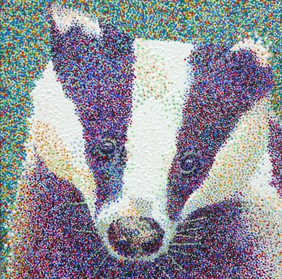 badger-ss