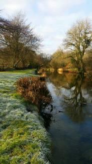 104-pauly-allen-frosty-morning-in-withypool