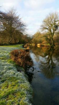 104-pauly-allen-frosty-morning-in-withypool