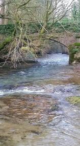 120-thomas-samule-mcdade-river-exe-bridgetown