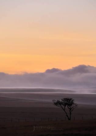 121-julia-amies-green-twilight-on-exmoor