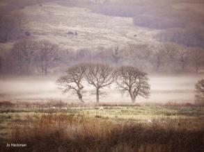 133-jo-hackman-bleak-winter-on-exmoor
