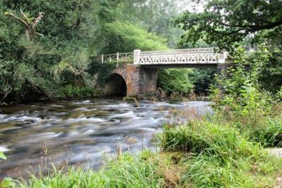 142-nick-phillips-marsh-bridge-dulverton