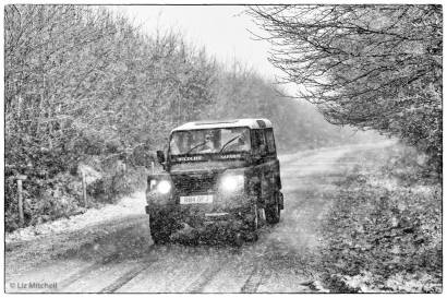 201-liz-mitchell-snow-12-1