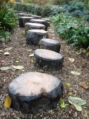 307-julie-wilson-stepping-logs-at-dunster-castle