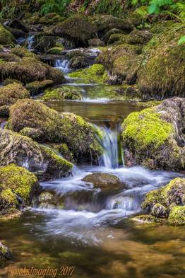 107 Michael Brooks West Water