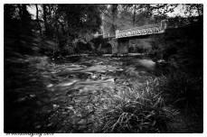 112 Michael Brooks Marsh Bridge B&W