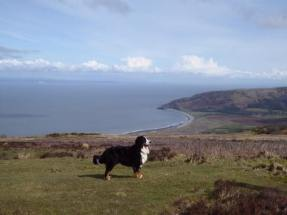 56 Jane Ellis Wiggins posing at the top of Porlock Hill