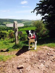 79 Emma Daniel Horner Woods Bosley 21 June 2003 - 4 April 2017