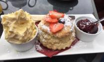 Delicious Strawberry Cream Tea at Hinam Farm Tea Rooms near Dulverton. Photo by Leanna Coles.
