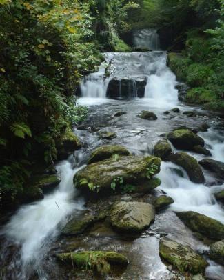 Another gorgeous north Devon hike today to Watersmeet in Exmoor 😍 ~ ~ ~ #hikingadventures #naturegram #nofilter #nationaltrust #watersmeet #devon #northdevon #exmoor #nature #naturephotography #naturelover #natureatitsbest #hiking #waterfall #waterfallhike #mynaturalbritain #uk #england #exploreengland #explorethesouthwest #englishcountryside #photosofbritain #ukpotd #bestukpics #gloriousbritain #scenicbritain #visitbritain #expat #expatlife #ukadventures 📷: @brittb03
