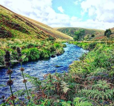 Autumn is here people, and Devon is looking as beautiful as ever. We're blessed to have two stunning coastlines and two incredible National Parks - Exmoor (shown here) and Dartmoor. There's so much to explore here for outdoor, adventuring families.⠀ ⠀ My latest blog post 5 Autumn Adventures in Devon for Outdoor Families is now live (link in bio). You can walk llamas on special Hot Chocolate Hikes over Dartmoor, get deep and dirty underground caving at Pridhamsleigh Cavern - a perfect Winter activity with caverns as large as houses and passages as wide as rivers OR paddle down rivers day or NIGHT. ⠀ ⠀ What adventures are your family heading to this weekend? ⛺️ 🌊 ⠀ #outdoorfamily #adventure #exploredevon #autumn #familytravel #outdoors #familyadventures #visitdevon #NorthDevon #southdevon #llama #llamawalks #exmoor #getoutdoors 📷: @thefamilyfreestylers