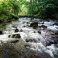 Celebrated getting engaged by taking a short holiday to Exmoor with my fiancé! This picture was taken on the last day during a walk along the East Lyn River from Watersmeet to Rockford. The rolling waters of the river tumbled past us, but a pebbled island allowed me to paddle into the middle of the river for this shot #Exmoor #Devon #holiday #water #walking #hiking 📷: @_strung_out_83