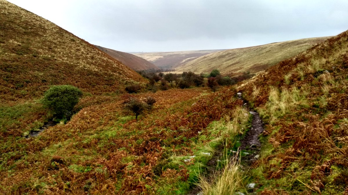 Exploring Exmoor: A Walk to Chalk Water